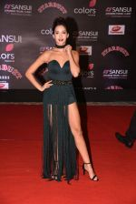 at 14th Sansui COLORS Stardust Awards on 19th Dec 2016 (14)_5858d47e58e9a.JPG