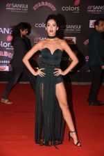 at 14th Sansui COLORS Stardust Awards on 19th Dec 2016 (16)_5858d47f17670.JPG