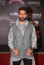 at 14th Sansui COLORS Stardust Awards on 19th Dec 2016 (21)_5858cbc858790.JPG