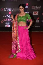 at 14th Sansui COLORS Stardust Awards on 19th Dec 2016 (34)_5858cbcb323f4.JPG