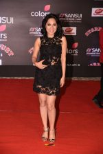 at 14th Sansui COLORS Stardust Awards on 19th Dec 2016 (47)_5858cbcf37dba.JPG