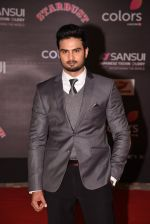 at 14th Sansui COLORS Stardust Awards on 19th Dec 2016 (53)_5858cbd2935a4.JPG