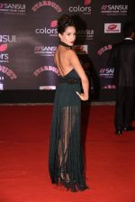 at 14th Sansui COLORS Stardust Awards on 19th Dec 2016 (22)_5858d48131317.JPG