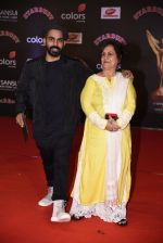 at 14th Sansui COLORS Stardust Awards on 19th Dec 2016 (30)_5858cbca17d29.JPG