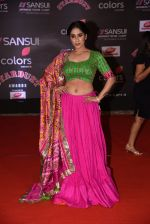 at 14th Sansui COLORS Stardust Awards on 19th Dec 2016 (33)_5858cbca9f65b.JPG