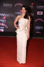 at 14th Sansui COLORS Stardust Awards on 19th Dec 2016 (44)_5858cbcd8183c.JPG