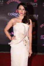 at 14th Sansui COLORS Stardust Awards on 19th Dec 2016 (45)_5858cbce20af7.JPG