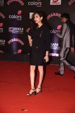 at 14th Sansui COLORS Stardust Awards on 19th Dec 2016 (45)_5858d483155f3.JPG