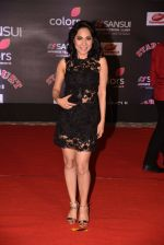 at 14th Sansui COLORS Stardust Awards on 19th Dec 2016 (46)_5858cbcea9509.JPG