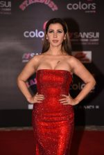 at 14th Sansui COLORS Stardust Awards on 19th Dec 2016 (49)_5858cbd057252.JPG