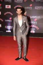 at 14th Sansui COLORS Stardust Awards on 19th Dec 2016 (54)_5858d4863539d.JPG