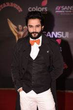 at 14th Sansui COLORS Stardust Awards on 19th Dec 2016 (58)_5858cbd3b1bc1.JPG