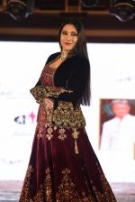 Aarti Surendranath walk for Lakshyam show at Brand of the Year Awards on 21st Dec 2016 (126)_585b8b316ad26.JPG