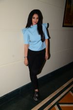 Anjana Sukhani at Coffe with D promotions on 27th Dec 2016 (30)_58636888bf39a.JPG