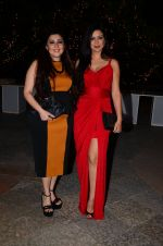 Archana Kochhar at Bright Beauty contest on 28th Dec 2016 (19)_586500eadc514.JPG