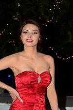 Sherlyn Chopra at Bright Beauty contest on 28th Dec 2016 (86)_586501acf0674.JPG