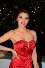 Sherlyn Chopra at Bright Beauty contest on 28th Dec 2016 (87)_586501ad949d2.JPG