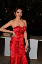 Sherlyn Chopra at Bright Beauty contest on 28th Dec 2016 (89)_586501aeb33cd.JPG