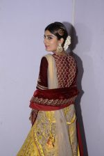 Model at Anju Modi Luxury Festive 2017 collection on 29th Dec 2016 (186)_5866065b141ec.JPG