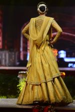 Model at Anju Modi Luxury Festive 2017 collection on 29th Dec 2016 (38)_586605fe9ea57.JPG