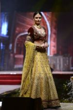 Model at Anju Modi Luxury Festive 2017 collection on 29th Dec 2016 (41)_58660600d9435.JPG