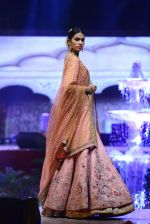 Model at Anju Modi Luxury Festive 2017 collection on 29th Dec 2016 (48)_5866060559bc2.JPG