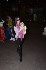 Sophie Chaudhary snapped at airport on 1st Jan 2016 (33)_5869f775cd8ba.JPG