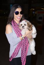 Sophie Chaudhary snapped at airport on 1st Jan 2016 (39)_5869f77fcb878.JPG