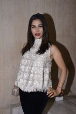 Sophie Chaudhary at Manish Malhotra hosts dinner for Vogue International�s Suzy Menkes on 6th Jan 2016 (63)_58722486e9ea6.JPG