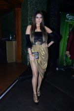 Gizele Thakral at Calendar Launch on 15th Jan 2017(75)_587c77b011647.JPG