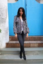 Mallika Sherawat snapped on 15th Jan 2017 (6)_587c70c57cfb1.JPG