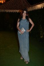 Sona Mohapatra at Ronnie Screwala daughter wedding reception on 20th Jan 2017 (140)_58837b23d0a52.JPG