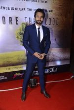 Jackie Bhagnani at Before the floods premiere on 23rd Jan 2017 (33)_5886fce033be7.JPG