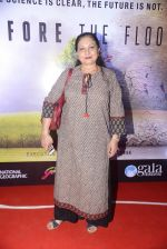 Maya Alagh at Before the floods premiere on 23rd Jan 2017 (22)_5886fcf0e4017.JPG