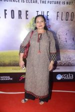 Maya Alagh at Before the floods premiere on 23rd Jan 2017 (24)_5886fcf35921b.JPG