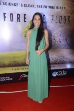 Tara Sharma at Before the floods premiere on 23rd Jan 2017