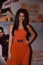 Amyra Dastur at Kungfu Yoga interview on 25th Jan 2017 (124)_588ae65d0e38d.JPG