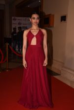 Radhika Apte at Lokmat Maharashtra_s Most Stylish 2017 on 31st Jan 2017,1 (295)_58918d4a16e8a.JPG