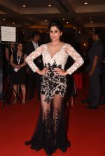 Sai Tamhankar at Lokmat Maharashtra_s Most Stylish 2017 on 31st Jan 2017,1 (228)_58918d7dacce2.JPG