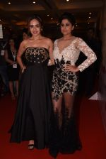 Sai Tamhankar, Amruta Khanvilkar at Lokmat Maharashtra_s Most Stylish 2017 on 31st Jan 2017,1 (236)_58918d83cac3e.JPG