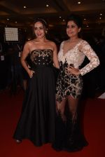 Sai Tamhankar, Amruta Khanvilkar at Lokmat Maharashtra_s Most Stylish 2017 on 31st Jan 2017,1 (237)_58918d8501fe8.JPG