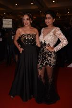 Sai Tamhankar, Amruta Khanvilkar at Lokmat Maharashtra_s Most Stylish 2017 on 31st Jan 2017,1 (235)_58918d829a349.JPG