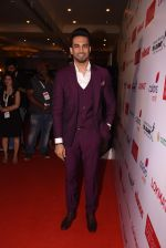 Upen Patel at Lokmat Maharashtra_s Most Stylish 2017 on 31st Jan 2017,1 (259)_58918e5508fce.JPG