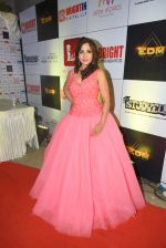 Neha Banerjee at 3rd Bright Awards 2017 in Mumbai on 6th Feb 2017_5899944fc64b9.JPG