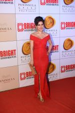 Shweta Khanduri at 3rd Bright Awards 2017 in Mumbai on 6th Feb 2017_589993b78dece.JPG