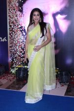Krishika Lulla at the 4th National Yash Chopra Memorial Award on 25th Feb 2017 (22)_58b30ca7a3b2f.JPG