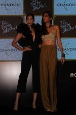 Sonam Kapoor at Chandon_s Party Starter Song with singer Anushka on 2nd March 2017 (22)_58b93d9a295b1.JPG