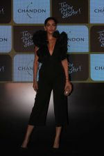 Sonam Kapoor at Chandon_s Party Starter Song with singer Anushka on 2nd March 2017 (25)_58b93d9ff1a5b.JPG