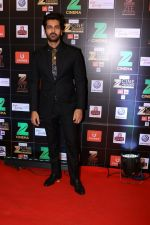 Arjan Bajwa at Red Carpet Of Zee Cine Awards 2017 on 12th March 2017 (1)_58c68a9f246e7.JPG