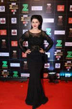 Kainaat Arora at Red Carpet Of Zee Cine Awards 2017 on 12th March 2017 (31)_58c68bf052b18.JPG